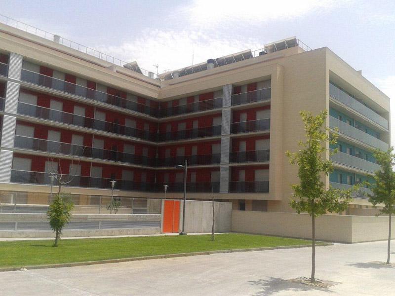 Los Olivos Huesca